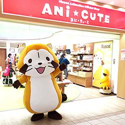 画像 5月17日、ANi★CUTE(あに★きゅーと)にプチラスカルが遊びに来ます!
