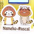 画像 福岡パルコ本館8F『ラスカルショップ』にプチラスカルが遊びにきます!