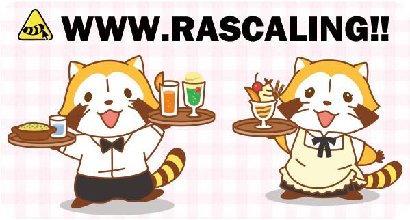http://araiguma-rascal.com/news_event/images/161001_w01.jpg