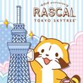 画像 「ラスカル」40周年と「東京ソラマチ<sup>&reg;</sup>」5周年!! 期間限定「ラスカルショップ」をオープン!