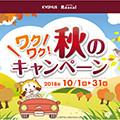 画像 キグナス「ワクワク!秋のキャンペーン」開催!!