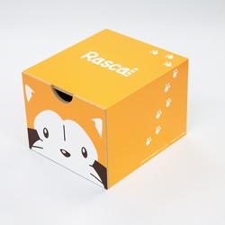 引き出しボックス(ラスカル オレンジ) 商品画像