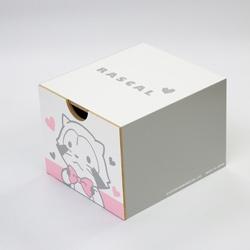 引き出しボックス(プチラスカル ホワイト) 商品画像