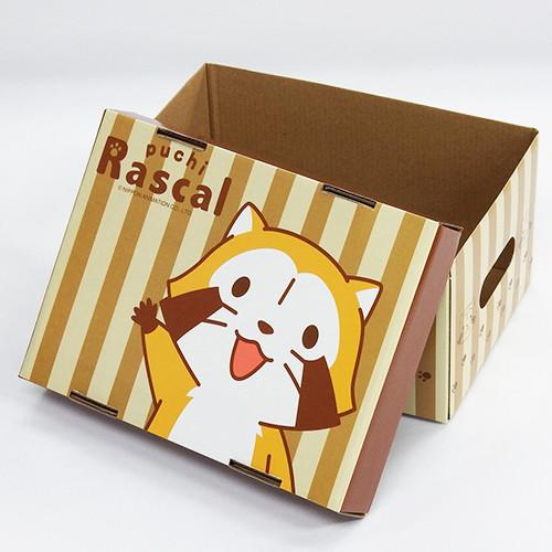 プチラスカル 収納BOX 商品画像